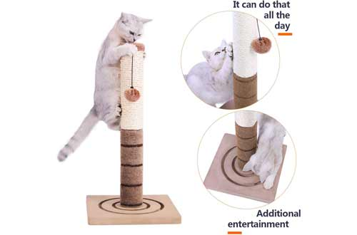 PAWZ Road Cat Scratching Post Cat Interactive Toys